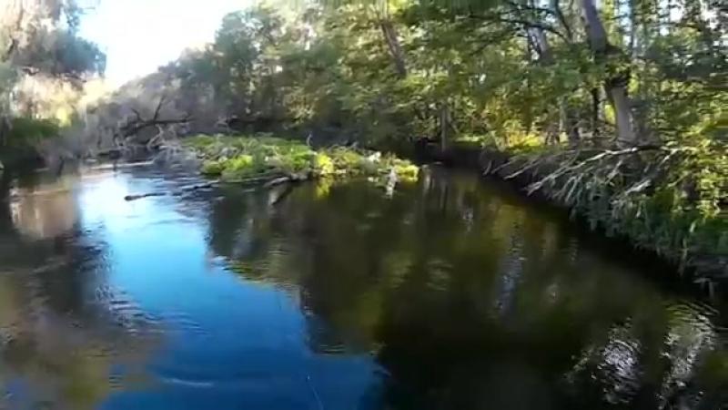 рыбалка и сплав по реке Сок yaclip scscscrp