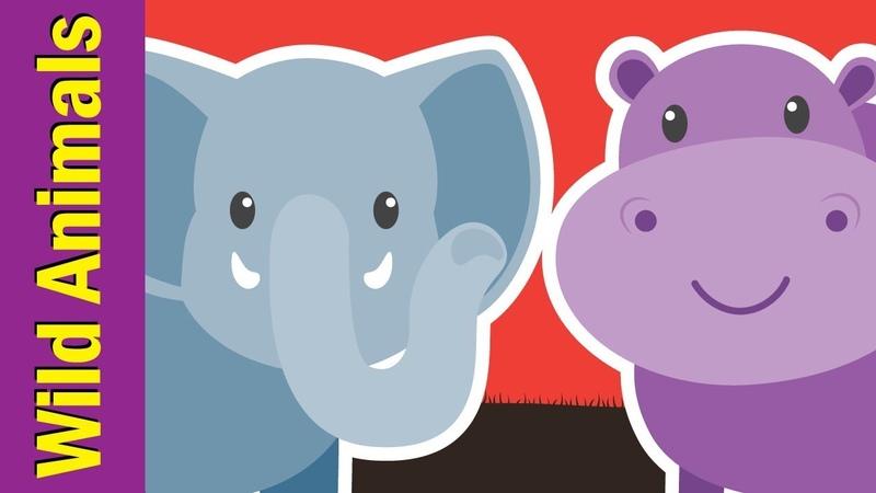 Learn Wild Animals for Kids Video Flashcards Kindergarten Preschool ESL Fun Kids English