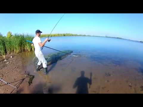 Осенняя рыбалка Дневник Фидериста