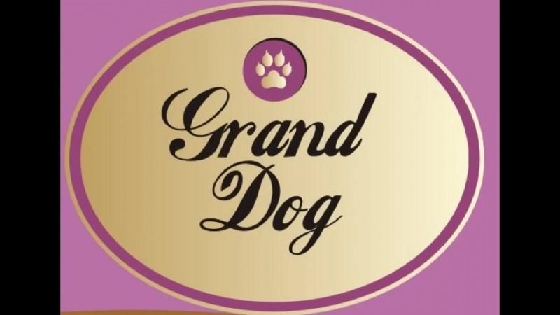 Сухие корма для собак Холистик от Grand Dog