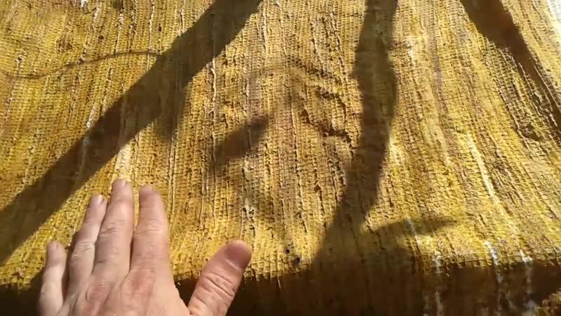 Прополісний холстик чи прополісний рушник з пасіки