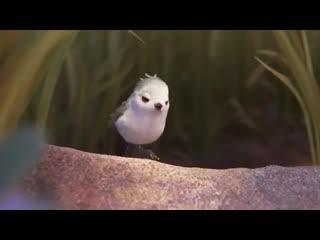 мультфильм Disney - Песочник - PIPER _ Короткометражки Студии PIXAR [том3]