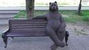 где сделать красивые фотографии в Великом Новгороде скамейка с медведем