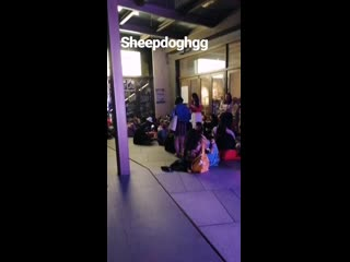 Chinese fans who didn't want the night to end (so did i) singing sheepdog p.1