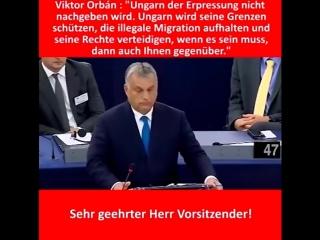 Viktor orbán ✔rede im eu parlament vom deutsch übersetzt