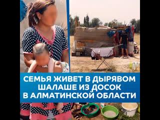 Многодетная семья живет в дырявом шалаше из досок и полиэтилена в Алматинской области