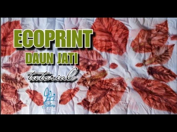 Batik ecoprint daun jati tutorial