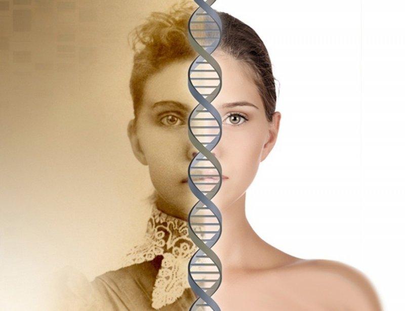 Интересно знать — факты о ДНК, изображение №5