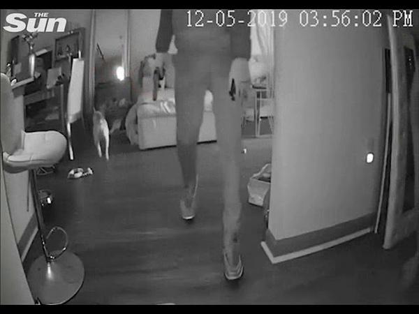Озброєний грабіжник втік, побачивши голу зірку Instagram