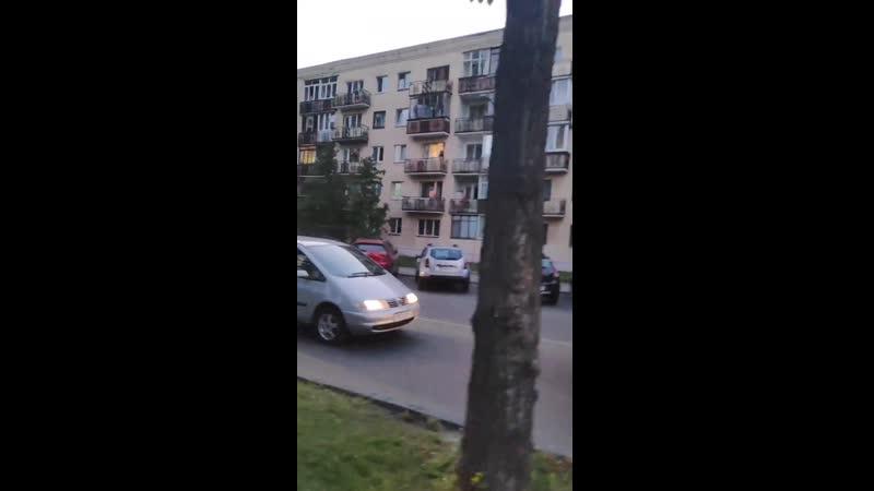 Брестчане массово ушли на Набережную Здесь водители образовали пробку и автозаку не проехать