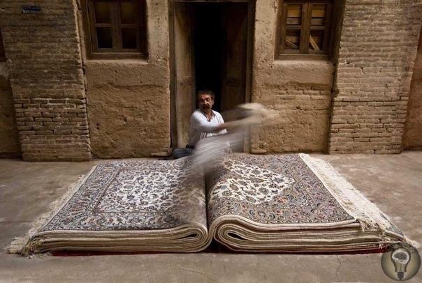 Ковёр в Иране больше, чем ковёр. Работы иранского фотографа Джалала Сепехра.