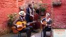 Showarama Gypsy Jazz Shine
