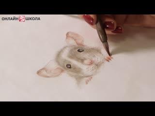 Приглашение и трейлер онлайн-курса Год Крысы с Марией Маевской