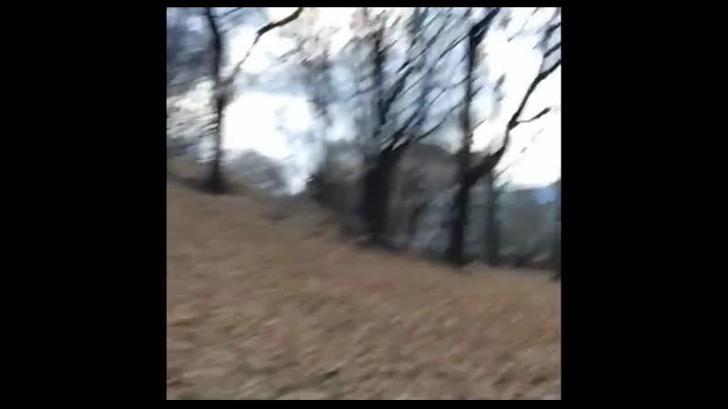 Гела Гуралиа .Осень в Лефортово.1 ноября 2014 год
