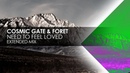 Cosmic Gate Foret Need To Feel Loved Extended Mix