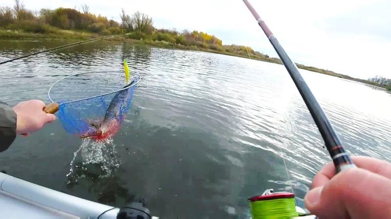 Ловля Щуки Окуня на воблеры.Рыбалка на Оке с лодки на спиннинг
