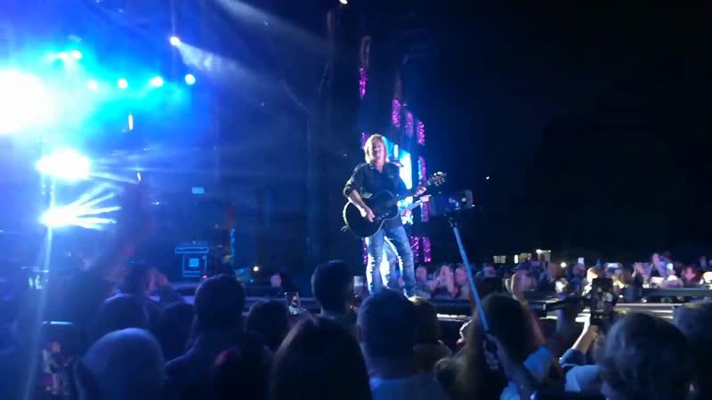 Chris Norman guitar