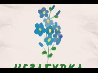Тима Белорусских- НЕЗАБУДКА Твой любимый цветок