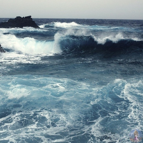 Морская красота