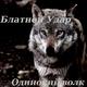 Розенбаум - Одинокий волк-2 внимание