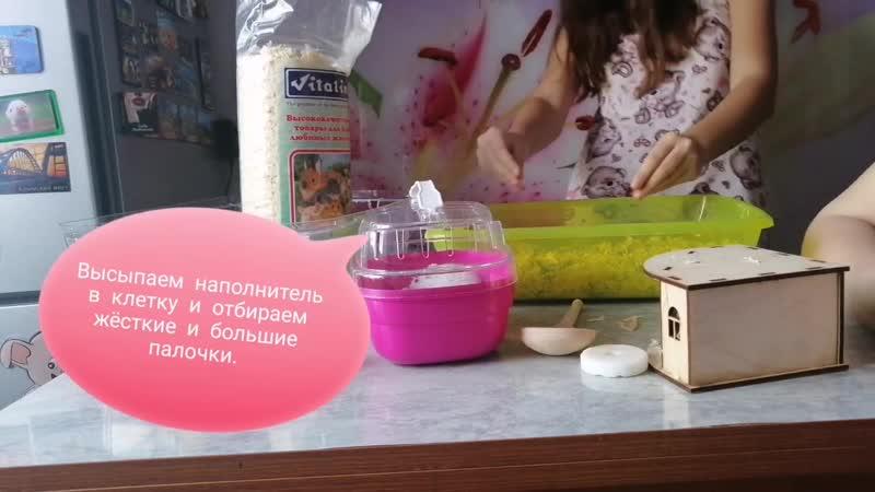 Гинервльная уборка в клетки Кикки