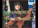Thundercat Them Changes Violin Cover