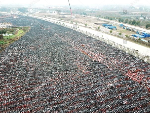 Кладбища велосипедов. Китайский фотограф Ву Гоюн прославился серией работ «Мест нет», посвященной невостребованным общественным велосипедам в китайских городах. Он сделал снимки велосипедных