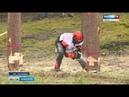В Сосновке прошел конкурс на лучшего вальщика леса