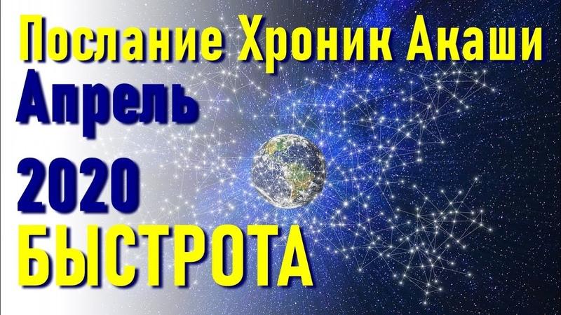 🔹Апрель 2020 Послание Хроник Акаши ченнелинг
