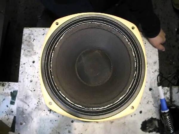 Tannoy Lynx Wildcat Puma Supder Red Monitor SRM 12X LGM 12 3169G Sicken Reparatur Spider Schwingspu