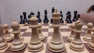 Шахматы. Шокируем соперника хитрым конем. Крутая ловушка. Обучение шахматам.