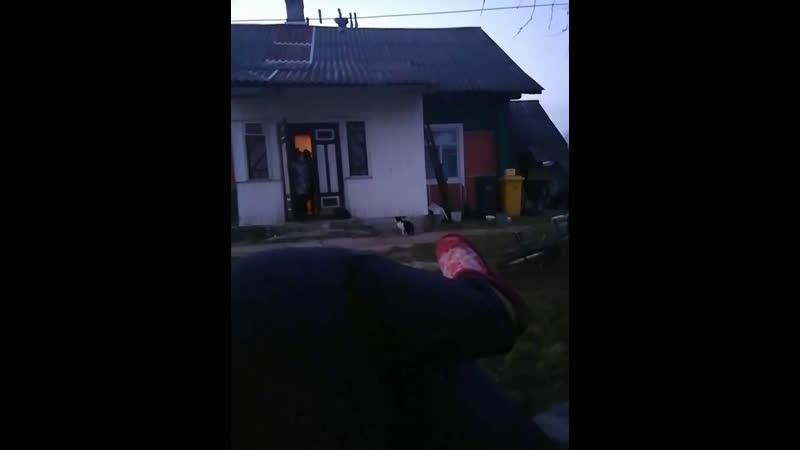 Виктория Черняк - Live