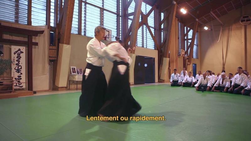 Stage International d'Aikido du VIGAN 1990 2015 Episode 2 IKEDA Sensei