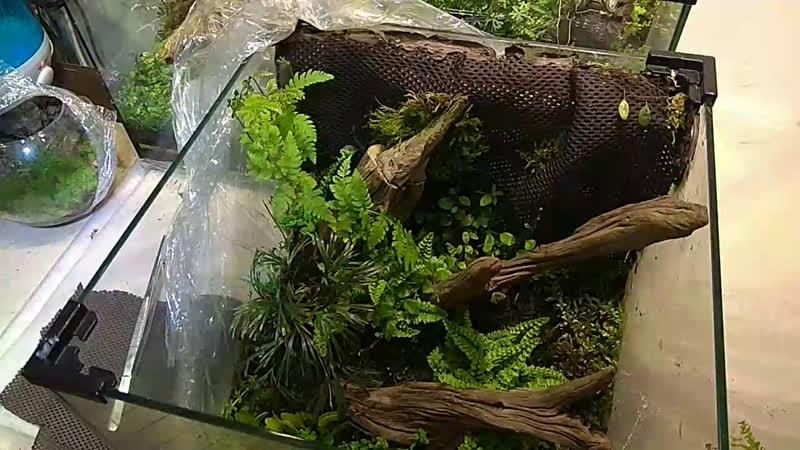 Миниобзор маиериалов и растений для маленьких объемов