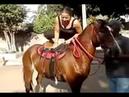Ponboy ركوب سيده علي الحصان ممتع ومثير