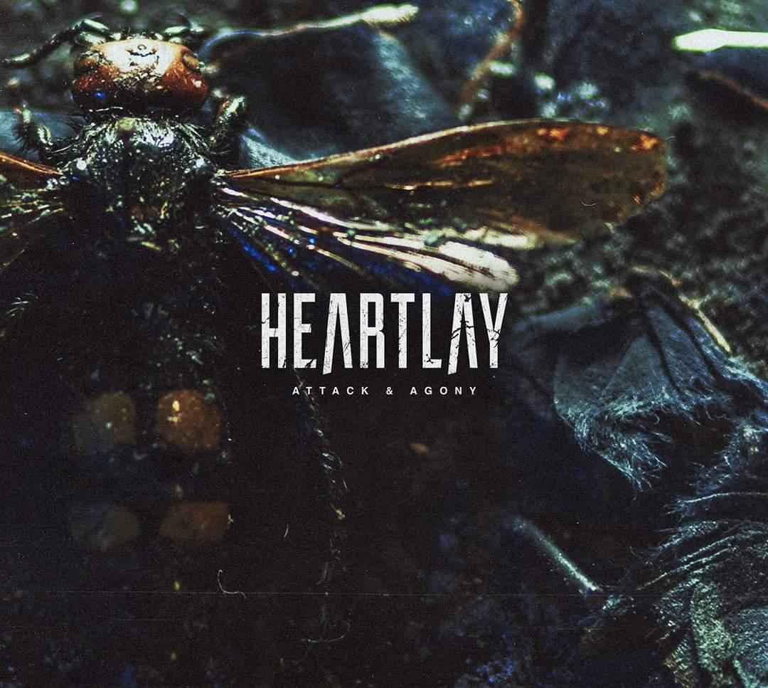 Heartlay - Attack & Agony