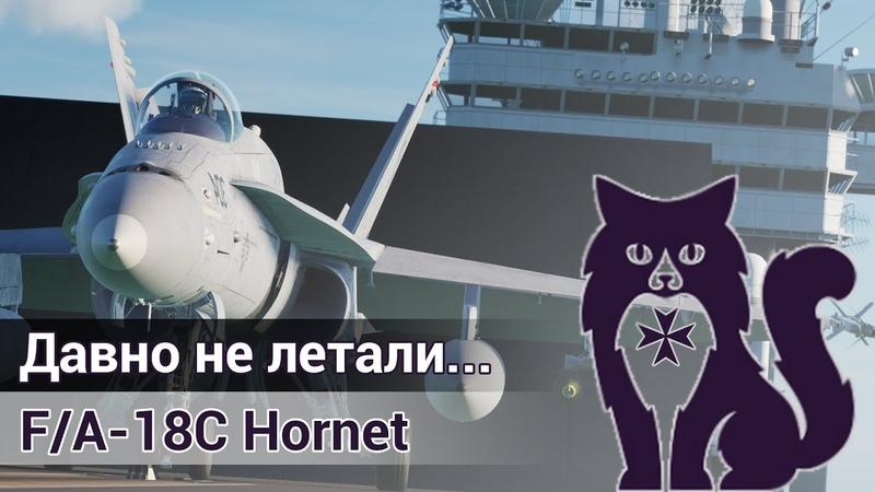 Давно не летали...F/A-18C Hornet (DCS World Stream) | WaffenCatLive