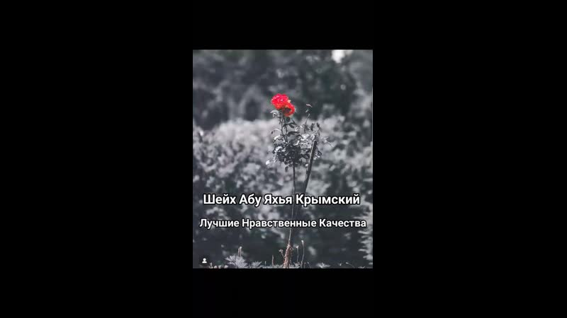 Абу Яхья Крымский Лучшие нравственные качества