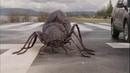 Primeval New World Jurassic Beetles