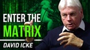 WELCOME TO THE MATRIX - David Icke You Have Been Programmed From Birth