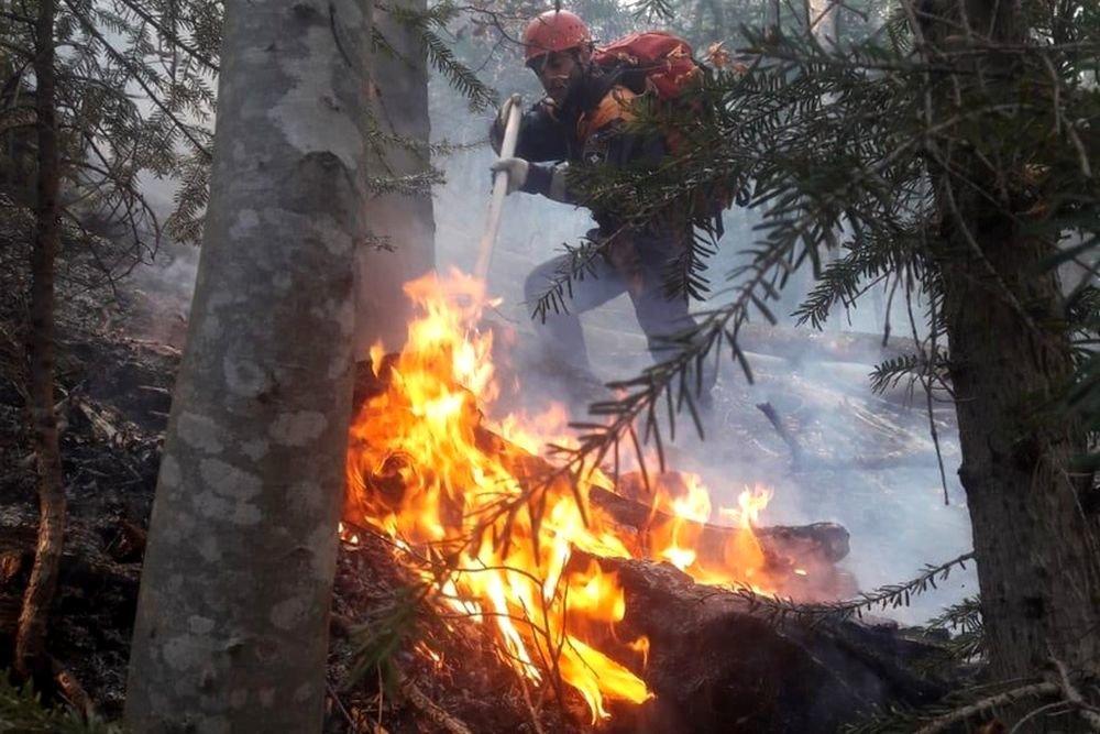Стала известна ситуация с лесными пожарами в КЧР