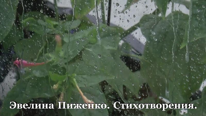 Стихи вслух Э Пиженко Уныло барабанит серый дождь
