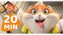 44 Gatti - serie TV 20 MINUTI con Polpetta!