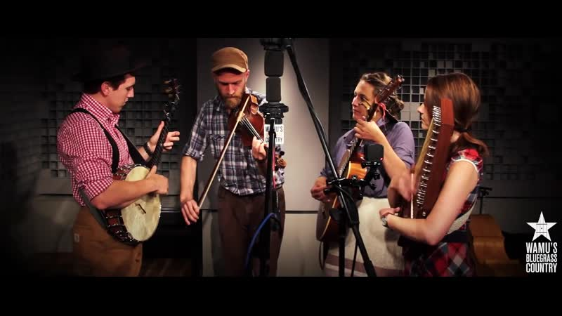 Empty Bottle String Band Wildwood Flower Live at WAMU`s Bluegrass Country