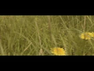 Виталий Агапов - Сонга калдым