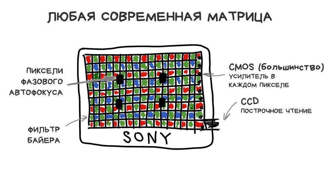 Устройство матрицы в современных фотоаппаратах