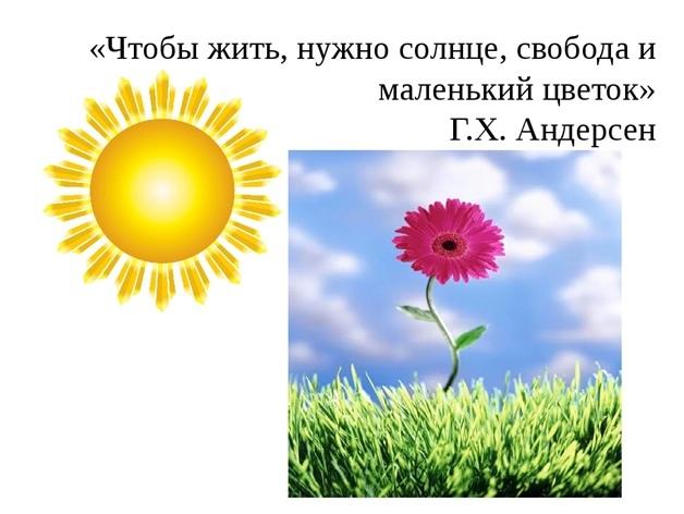 Познавательно – игровая программа «Цветочная почемучка», изображение №3