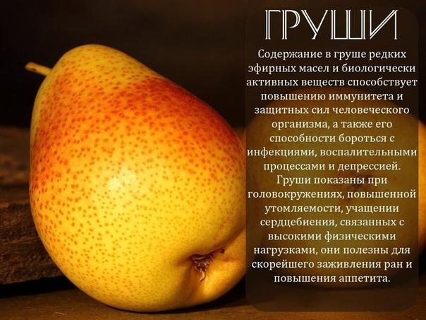 Описание фруктов с картинками