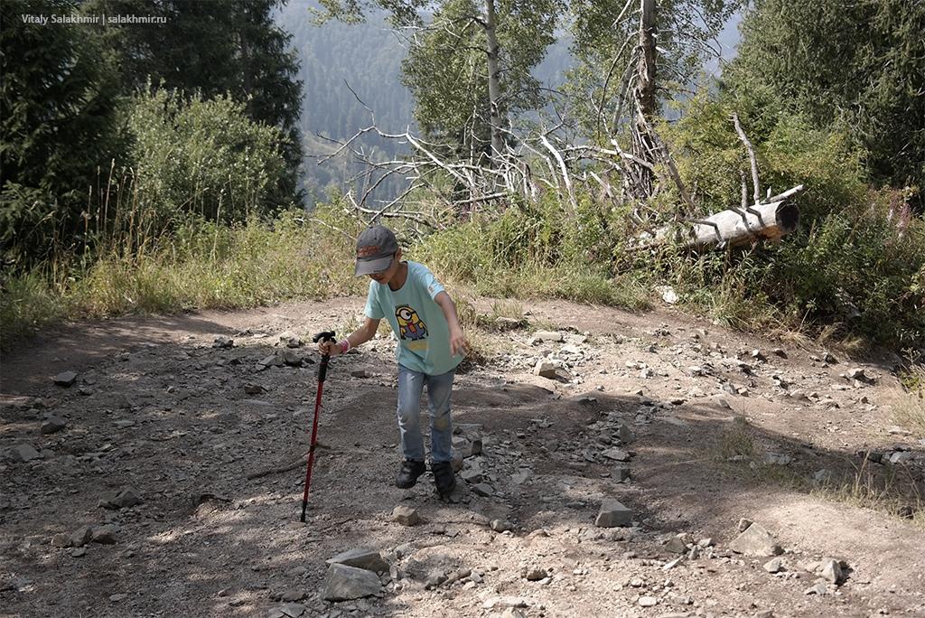 Поход в горы Алматы с детьми, Кок-Жайляу 2019