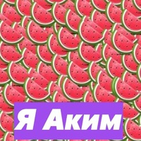 Аким Яснолобов